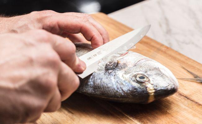Der Carl Mertens Onlineshop Messerfinder - Messer für Fisch